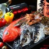 氷見直送鮮魚【富山県】