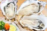 料理長が毎週選んだ全国の牡蠣【料理長が毎週選んだ全国の牡蠣】