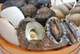 日替りで入荷する、本日の貝(ほっき、本ミル、平貝、あわびなど)