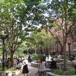 中庭が大人気!散歩の後少し休んだら、もちろんマジックバーへ!
