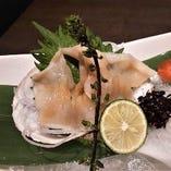 春・白ミル貝のお刺身