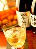 京都産の青谷梅酒を初め、豊富な梅酒を取り揃えております。