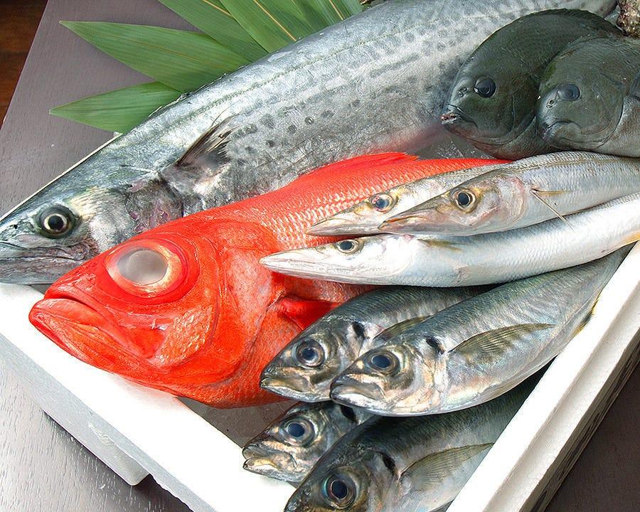 新鮮な地魚の旨みを堪能する