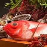 日本全国から仕入れる厳選鮮魚【東京都】