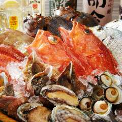 魚盛 有楽町電気ビル店