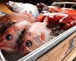 鮮魚【静岡県沼津市】