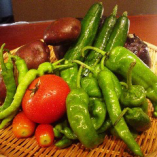 自社農園から採れたてのお野菜をお届け致します。