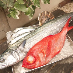 本日の鮮魚その日のスタイルで