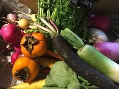 鎌倉野菜の和・フレンチ カドヤ 本厚木本店