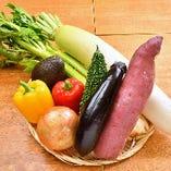 地元産を中心に仕入れる新鮮なお野菜も自慢!サラダなどでみずみずしさをご満喫ください♪