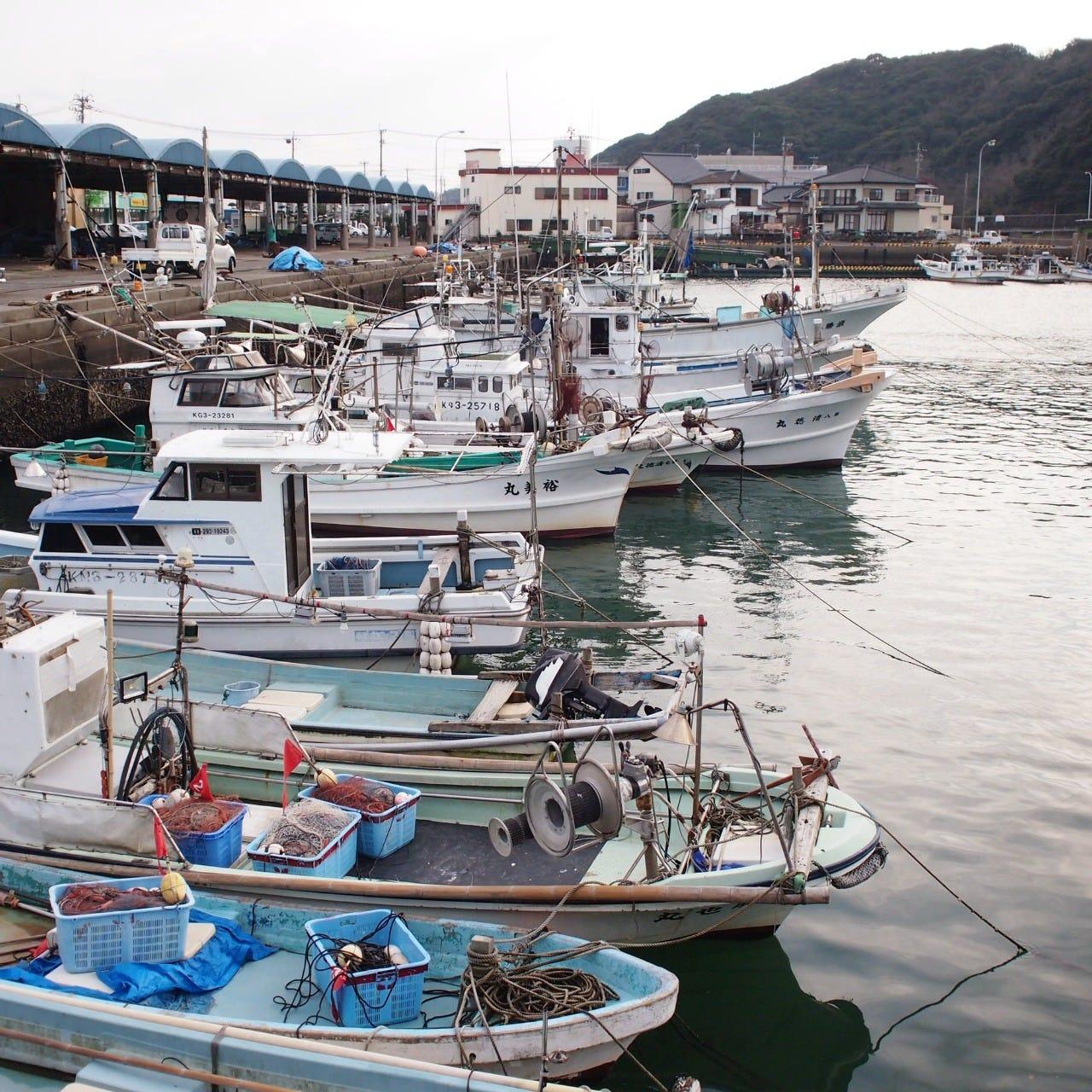日本有数の漁港から毎日届く直送便!