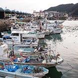 鹿児島県阿久根漁港からの直送鮮魚【鹿児島県阿久根漁港】