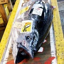 豊洲市場熟練仲買人が仕入れる鮮魚!
