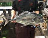 魚屋から毎日届く新鮮鮮魚をお楽しみ下さい♪
