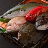 漁港直送の新鮮な海の幸を季節メニューでご提供!