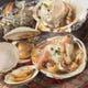 七輪で焼く、刺身でも食べれる貝類は絶品!!
