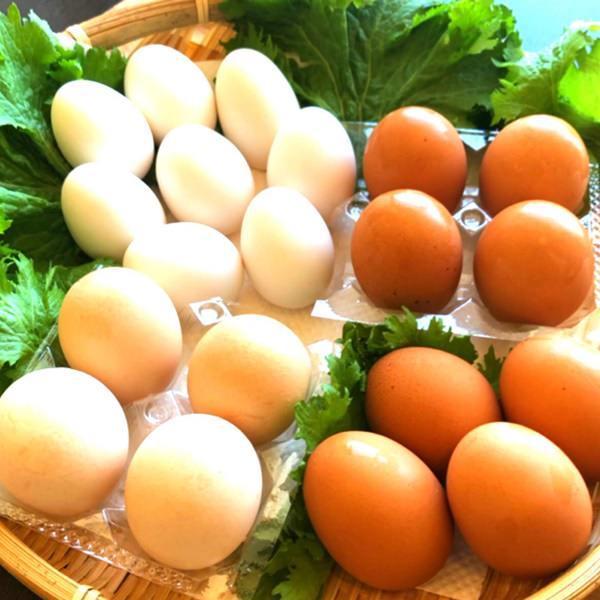 ◆養鶏場直送・選べる直送地たまご!