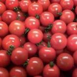 有機トマト『千果』【北海道】