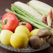 こだわりの無農薬有機野菜