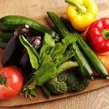 地元柏の旬野菜