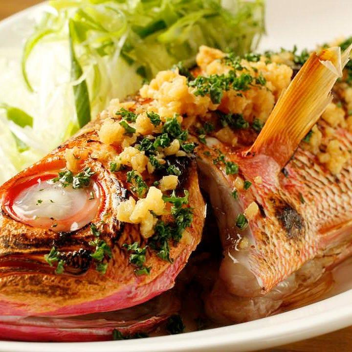 看板料理!本日の一本鮮魚料理