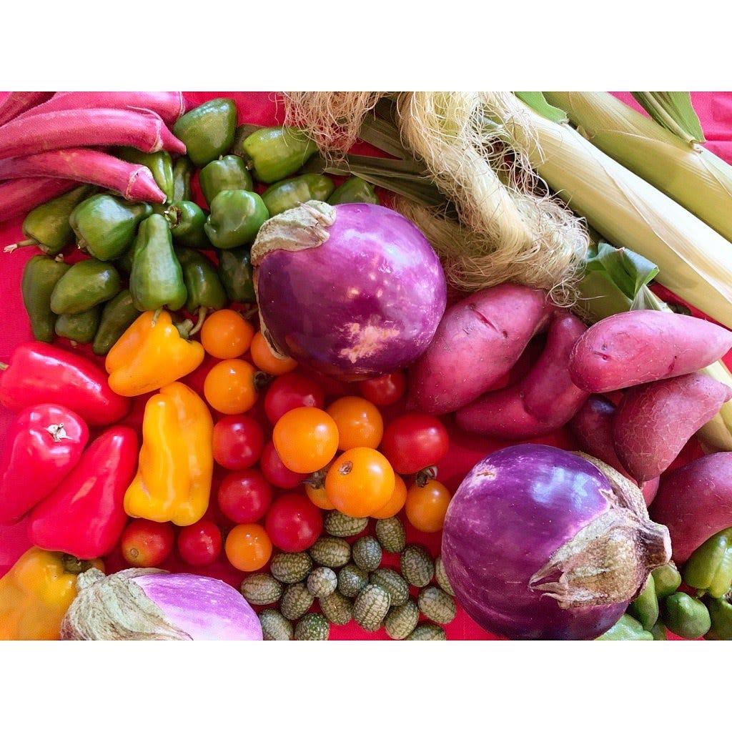 滋賀県産無農薬野菜を使用