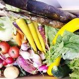 契約農家の新鮮お野菜【山梨県】