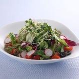 10種類野菜の菜園サラダ