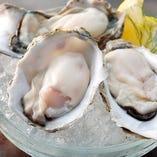 旬の産地から厳選した生牡蠣をどうぞ!