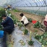 ◆野菜は信頼ある農家さんより【富山県】