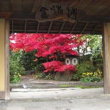 ◆広がる日本庭園