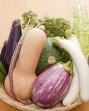 産地直送の新鮮な野菜