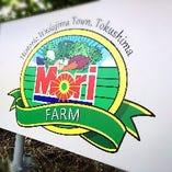 徳島県自家農家で採れた新鮮野菜を使用【徳島県】