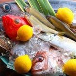 中央市場より厳選仕入れ!新鮮魚介類のお造りを味わえるのもおいでんかの楽しみ方の一つ♪当日おすすめのお造りメニューもございます。