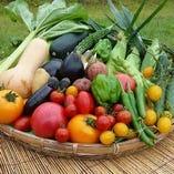 地元蒜山の新鮮野菜