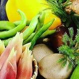 ◆新鮮・ひょうごの野菜◆【兵庫県】