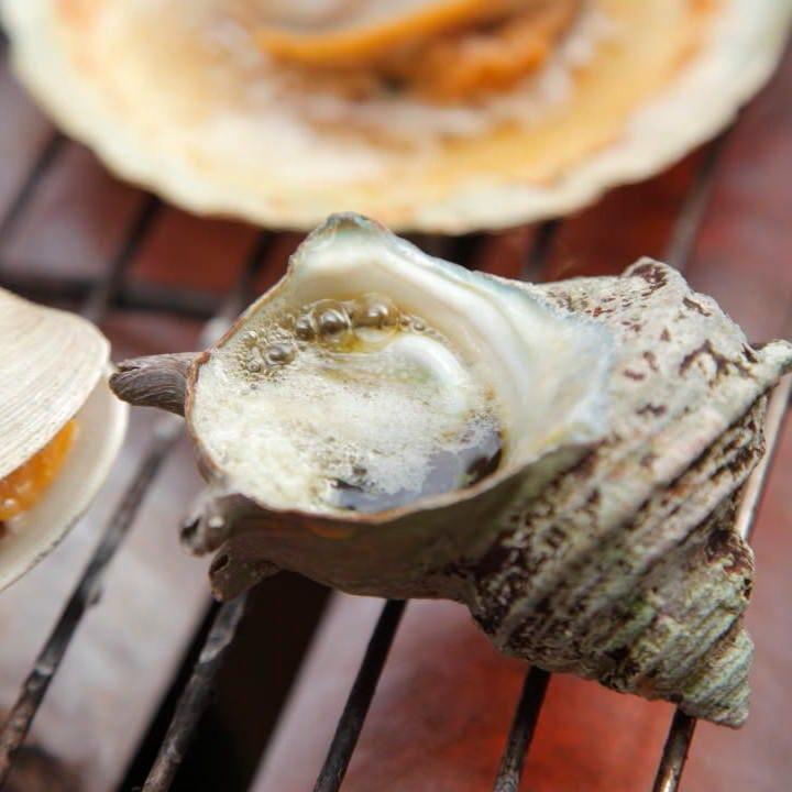 磯の香が堪らない熱海港の獲れたて魚介を贅沢にいただく!