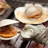 【当日OK♪】 人気の活アワビや活サザエをお得に楽しむ!活貝浜焼きセット3種