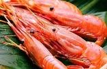 東海飯店 海鮮類食材 産地一覧【東京都】