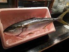 新鮮魚介を活用したお刺身