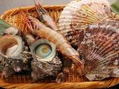 とりたての魚介類
