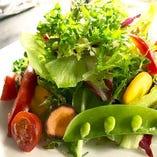 有機野菜のグリーンサラダ