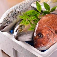 毎朝買付け!市場直送鮮魚をお刺身で