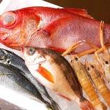 沼津港でその日にとれた鮮魚がいただけます