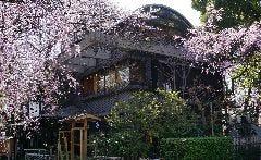 Izuei Umegawatei