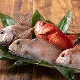 売り切れ御免!!『旬鮮魚のお造り盛』