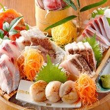 [鮮度抜群]相模湾の鮮魚料理を堪能