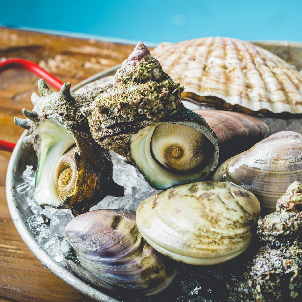 その他にも沢山の海産物を用意してます。宴会でも召し上がれます