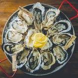 北海道の活生牡蠣