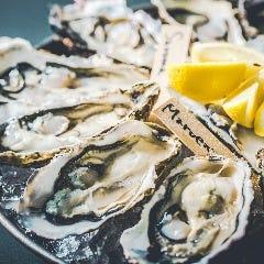Oyster Bar SALT MODERATE